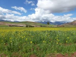 landschap Chinchero